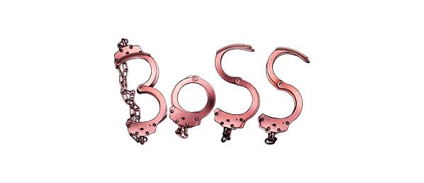 BOSS(2ndシーズン)再放送予定